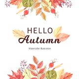 Hand drawn watercolor illustration. Frame with fall leaves. Fore stock illustration