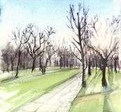 Watercolor illustration landscape with sun and trees in the park stock illustration