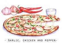 Hand-drawn watercolor illustration of the pizza with the chicken meat, garlic and red hot chili pepper. Drawing of the fast Italian food  on the white Stock Photos