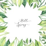 Hand drawn watercolor illustration. Pre made compositions with botanical spring leaves. Greenery frame. Floral Design elements. vector illustration
