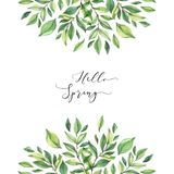 Hand drawn watercolor illustration. Pre made compositions with botanical spring leaves. Greenery frame. Floral Design elements. royalty free illustration