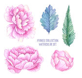 Hand drawn watercolor illustrations. Spring leaves and peonies f. Lowers. Save the date. Perfect for wedding invitations, greeting cards, blogs, posters and more Stock Photo