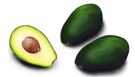 Hand drawn watercolor Isolated avocado. Green eco vegetarian lifestyle royalty free stock photo