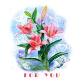 Hand drawn watercolor lily flowers isolated on white background. Spring blossom flowers Stock Photography