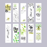 Hand drawn watercolor olive oil labels collection Stock Photos