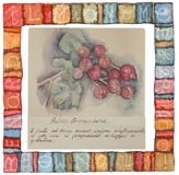 Hand drawn watercolor painting decorative -Ribes Grossularia Royalty Free Stock Image