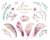 Hand drawn watercolor paintings vibrant feather set. Boho style rose wings. illustration isolated on white. Bird fly. Hand drawn watercolor paintings vibrant vector illustration