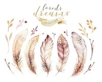 Free Hand Drawn Watercolor Paintings Vibrant Feather Set. Boho Style Wings. Illustration Isolated Ont White. Bird Fly Design Royalty Free Stock Image - 111126026