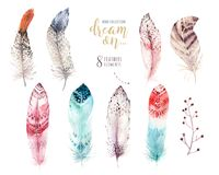 Hand drawn watercolor paintings vibrant feather set. Boho style wings. illustration isolated on white. Bird fly design. For T-shirt, invitation, wedding card Royalty Free Stock Photos