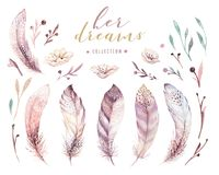 Hand drawn watercolor paintings vibrant feather set. Boho style rose wings. illustration isolated on white. Bird fly. Hand drawn watercolor paintings vibrant royalty free illustration