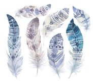 Hand drawn watercolor paintings vibrant feather set. Boho style Royalty Free Stock Images