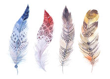 Hand drawn watercolor paintings vibrant feather set. Boho style. Wings. illustration isolated on white. Bird fly design for T-shirt, invitation, wedding card Stock Photography
