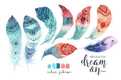 Hand drawn watercolor paintings vibrant feather set. Boho style Stock Photography