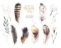 Hand drawn watercolor paintings vibrant feather set. Boho style wings. illustration isolated on white. Bird fly design. For T-shirt, invitation, wedding card vector illustration