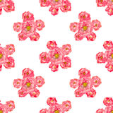 Watercolor rose seamless pattern Royalty Free Stock Photo