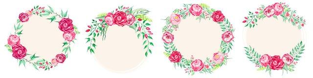Hand drawn watercolor roses clip art Stock Image