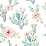 Hand drawn watercolor saguaro cactuses seamless pattern Royalty Free Stock Photography