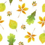 Hand drawn watercolor, Seamless autumn pattern royalty free stock photos