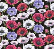 Hand-drawn watercolor seamless floral pattern with beautiful anemones. Repeated print with blossom for the wrapping paper, textile and wallpapers. Dark black Royalty Free Illustration