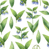 Hand drawn watercolor seamless pattern of Comfrey. Royalty Free Stock Photography