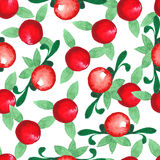 Hand drawn watercolor seamless pattern. Cranberries. Botanical theme vector illustration
