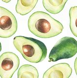 Hand-drawn watercolor seamless pattern with fresh green avocado on the white background. Repeated fruit background. - Illustration vector illustration