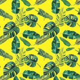 Hand-drawn watercolor seamless pattern. Green tropical leaves.  vector illustration