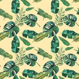 Hand-drawn watercolor seamless pattern. Green tropical leaves.  royalty free illustration