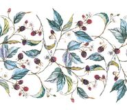 Hand-drawn watercolor seamless pattern with natural motives: blackberry branches, leaves and berries. Hand-drawn watercolor seamless ornament with natural Stock Illustration