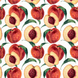 Hand drawn watercolor seamless pattern with peaches. Vintage fruit style. Botanical Illustration isolated on white. Design for pri Royalty Free Stock Photo