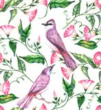 Hand-drawn watercolor seamless pattern with pink and white flowers and violet birds. Colorful blossom on the repeated print for the textile, wallpapers etc Royalty Free Illustration