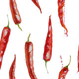 Hand drawn watercolor seamless pattern with red chilly peppers. On the white background Royalty Free Stock Image