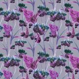 Hand drawn watercolor seamless pattern of a violet and green gentle meadow thistle on a gray background. Stock Photography