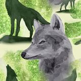 hand drawn watercolor seamless pattern wolf in night forest stock image