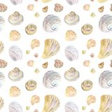 Watercolor natural color seashell pattern vector illustration