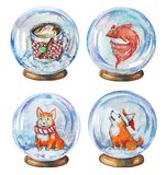 Hand drawn watercolor set of illustrations of snow globes witn coffee mug, fish and corgi dogs vector illustration