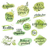 Hand drawn watercolor stickers and badges for organic food Stock Image