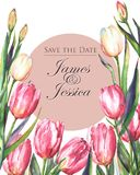 Watercolor template of wedding invitation card with pink and white tulips. Hand-drawn watercolor template of wedding invitation card with pink and white tulips Stock Illustration