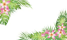 Watercolor tropical border frame with monstera, palm tree leaves and flower frangipani isolated on white background stock illustration