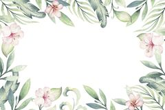 Hand drawn watercolor tropical flower background. Exotic palm leaves, jungle tree, brazil tropic botanical decoration