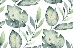 Hand drawn watercolor tropical flower seamless pattern. Exotic palm leaves, jungle tree, brazil tropic botanical