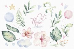 Hand drawn watercolor tropical flower set. Exotic palm leaves, jungle tree, brazil tropic botanical decoration botany