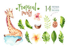 Hand drawn watercolor tropical plants set and giraffe. Exotic palm leaves, jungle tree, brazil tropic botany elements. And monkeys. Perfect for fabric design stock illustration