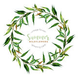 Hand drawn watercolor willow wreath Royalty Free Stock Photography