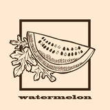 Hand drawn watermelon Royalty Free Stock Image