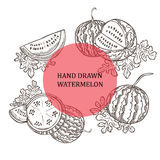 Hand drawn watermelons Royalty Free Stock Photo