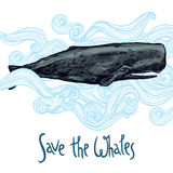 Hand Drawn Whale Illustration In Blue Waves. Save The Whales Royalty Free Stock Images