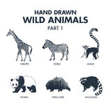 Hand drawn wild animals icons set. Stock Images