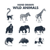Hand drawn wild animals icons set. Stock Photo