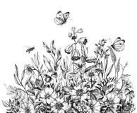 Free Hand Drawn Wild Flowers, Bees  And Butterfly Royalty Free Stock Photos - 148640698